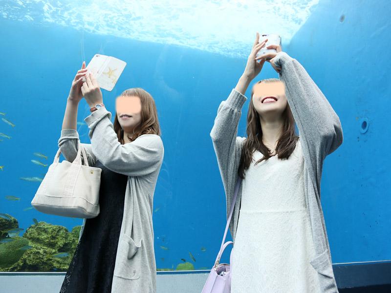 八景島ぶらさんぽ その2