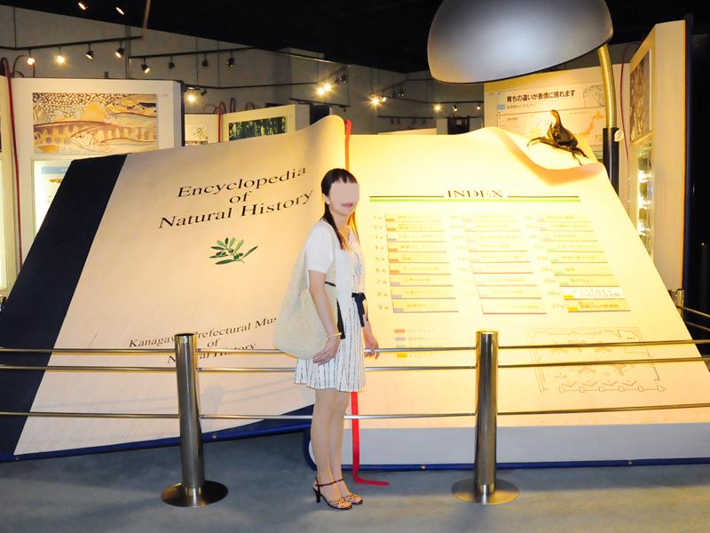 生命の星・地球博物館