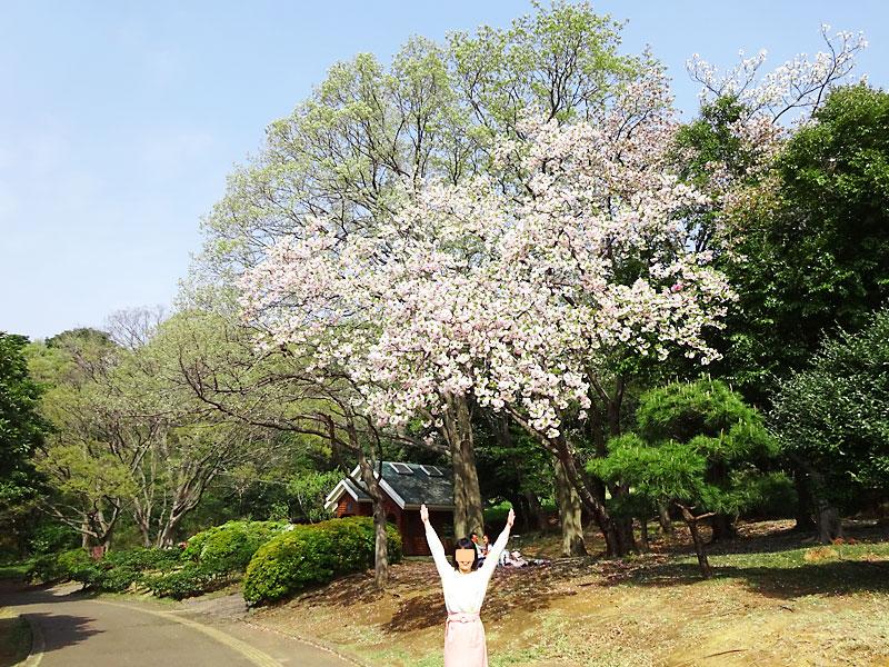 根岸森林公園 立花わかな